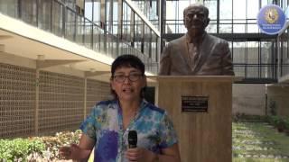 Tema: InnovArte 2016 presenta a Cora Calderón