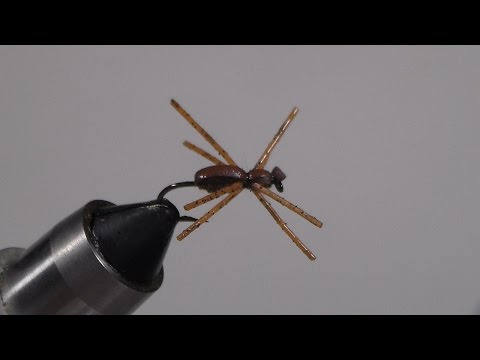 Fly Tying - S.  S.  Panfish Killer Spider