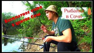 Рыбалка на карася в Сочи Осторожно ЗМЕИ