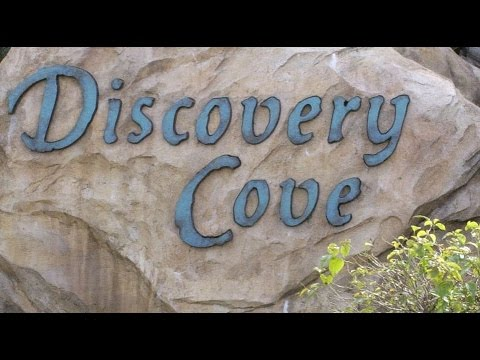 Discovery Cove in Orlando, Florida - Discovery cove discount tickets - Discovery cove promo code