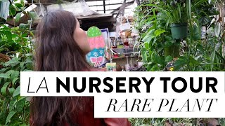RARE HOUSEPLANT SHOPPING | TOP PLANT NURSERY IN LOS ANGELES | San Gabriel Nursery