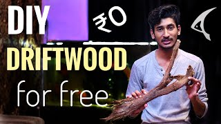 How to make Driftwood For Aquarium (FREE) | DIY Driftwood at home for Free