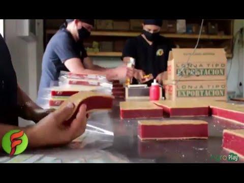 Cómo se hace Dulce de Guayaba y Dulce de Leche - Bocadillo con Arequipe- por Juan Gonzalo Angel