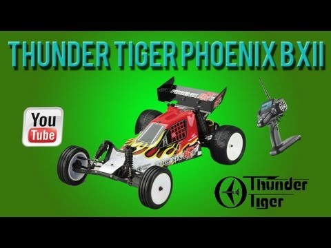 Thunder Tiger Phoenix BX II Test Run
