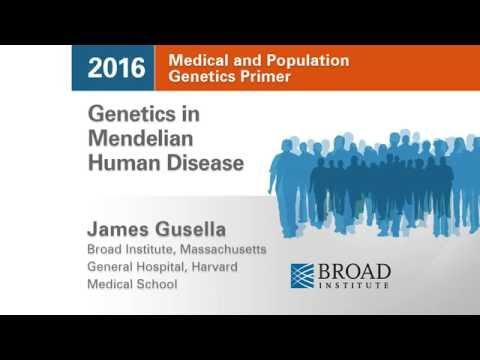 MPG Primer: Genetics in Mendelian Human Disease (2016)