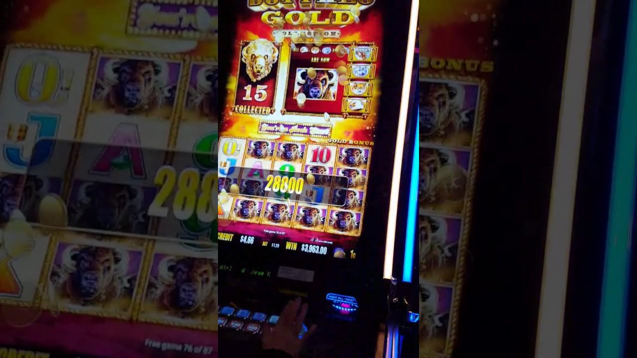 buffalo gold slot machine