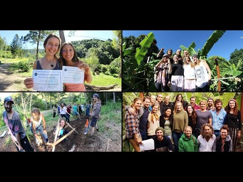 Permaculture Design Course - PDC Course - Residential & Online by Noosa Forest Retreat - Trailer