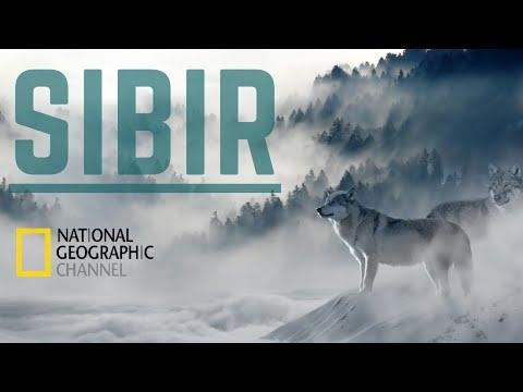 Uspon Trećeg Rajha (Dokumentarni filmovi s prevodom) from YouTube · Duration:  1 hour 26 minutes 28 seconds