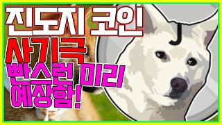 진돗개 코인 사기임을 미리 예상! 5월 11일 방송분!…