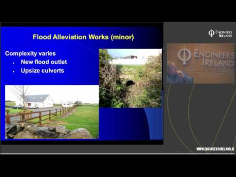 Flood protection and the Environment – how to manage the balance