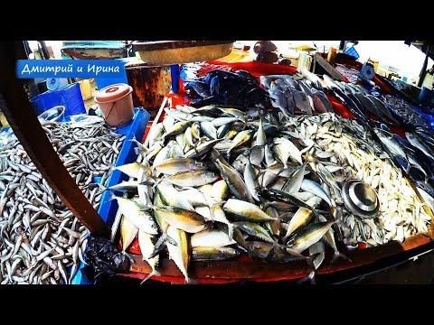 ГАЛЛЕ & УНАВАТУНА отдых ШРИ ЛАНКА ^ Цены рыбный рынок! GALLE * УНАВАТУНА :) Шри-Ланка цены /на рыбу/