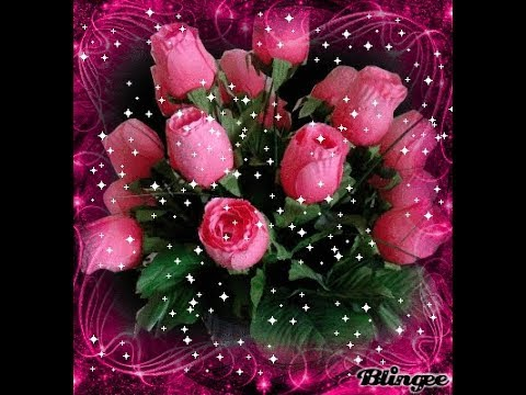 Beautiful Rose Image Profile Picture Whatsapp Youtube