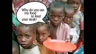 MEAT = WORLD HUNGER (Human Animal Rights Famine Malnutrician Abuse Waste Crops UNICEF Heifer Kids