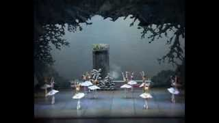 The Shanghai Ballet presents The Butterfly Lovers