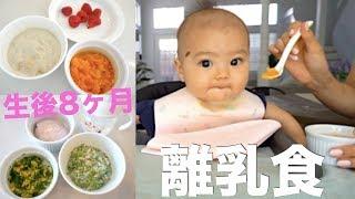 離乳食8ヶ月 | とある1日の簡単離乳食♡ WHAT MY BABY EATS IN A DAY!