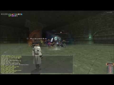 Final Fantasy XI: Intense Ambuscade [VD] (June, 2019)