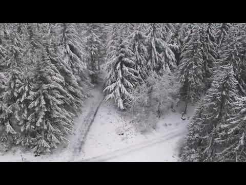 Zima - Niemcy 03.01.2021 Arft