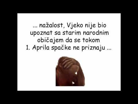 spačke za rođendan Spacka na 1. April   YouTube spačke za rođendan