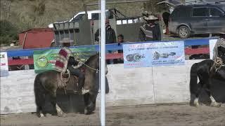 SERIE CAMPEONES RODEO EL BLANCO, 12 Y 13 OCTUBRE