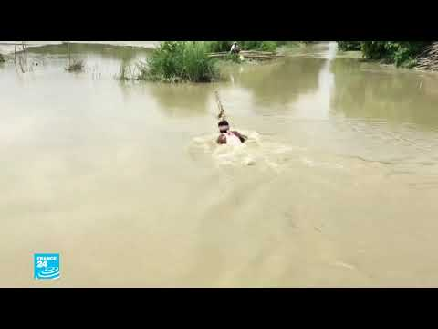 الهند: أكثر من مليون مشرد إثر فيضانات عارمة اجتاحت دول جنوب آسيا  - نشر قبل 3 ساعة