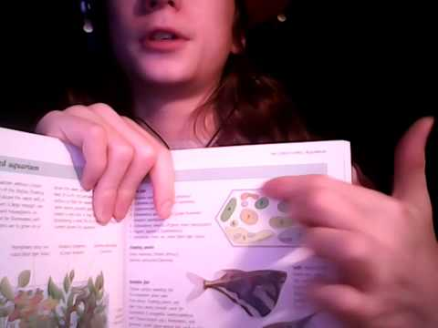 Aquarium plant encyclopedia book review