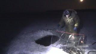 Рыбалка на Мордушку/ Ночная Рыбалка/Проверка Верши/ Кубарь/ Мордушка/ Морда