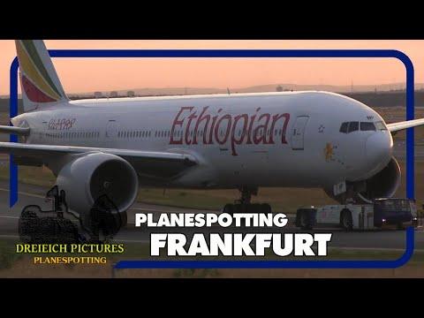Planespotting Frankfurt Airport | August 2017 | Teil 2