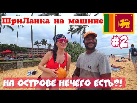Хиккадува пляж с черепахами. Еда на Шри Ланке. Где поесть в Хиккадуве. Где купить чай. Наригама. 16+