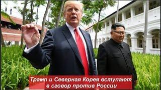 Трамп и Северная Корея вступают в сговор против России. № 1131
