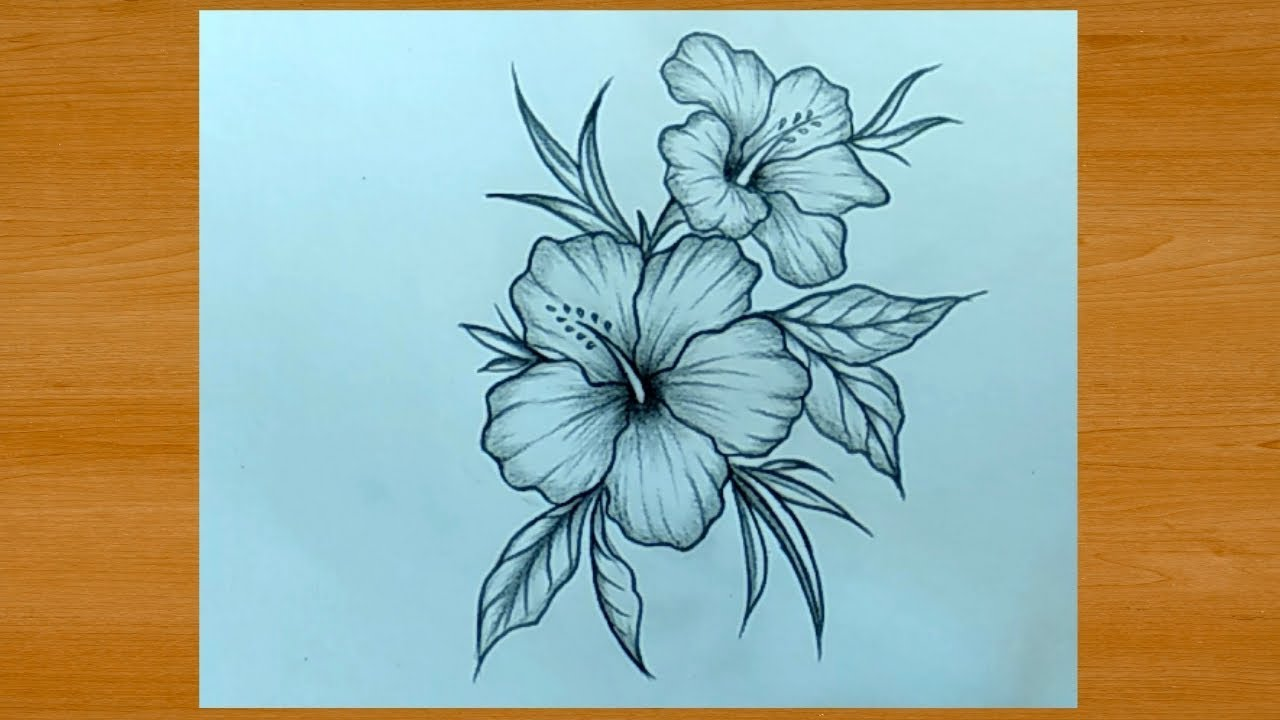 Beautiful Flower Drawing With Pencil Easy Youtube