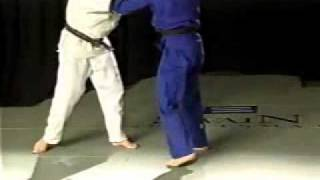 броски дзюдо.flv(любимый вид спорта., 2011-03-22T09:35:16.000Z)