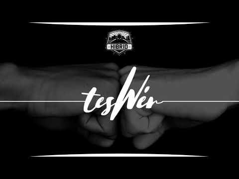 TESWÉR /HIBRID,IMIR,FLEX,FIATAL VETERÁN/