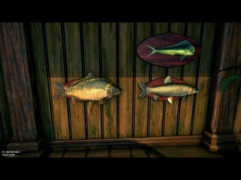 Ultimate Fishing Simulator, How To Get The Big Carp Guide, 48 Kg Mirror Carp