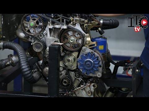 Como cambiar la correa de distribución de un  motor diesel