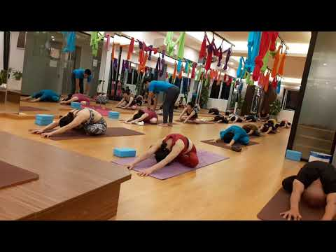 Ultimate Yoga|Yoga For All|Master. Praveen|PraveenYoga