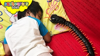 SCARY CENTIPEDE Prank - Animal Planet Remote Control Centipede Snake toys for kids