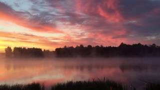 видео Девять карпов рыбалка