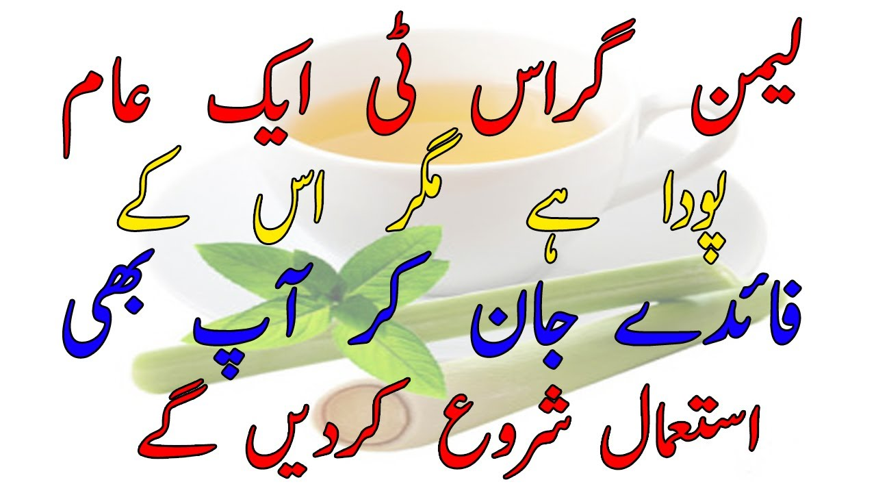 lemongrass tea for weight loss in one month in urdu lemon ...