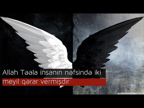 Allah Təala insanın nəfsində iki meyil qərar vermişdir