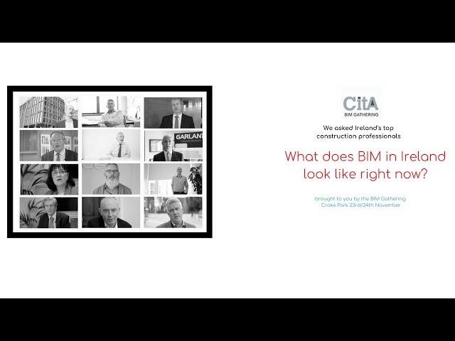 What does BIM in Ireland look like in 2017