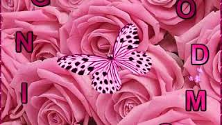 Gif of pink butterfly