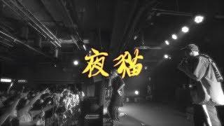 【顏社】夜貓組(Leo王+春艷) - 嘿!小鬼 (Lyrics Music Video)