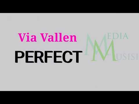 Via Vallen - Perfect ( cover ) Koplo Version [Lyrics]