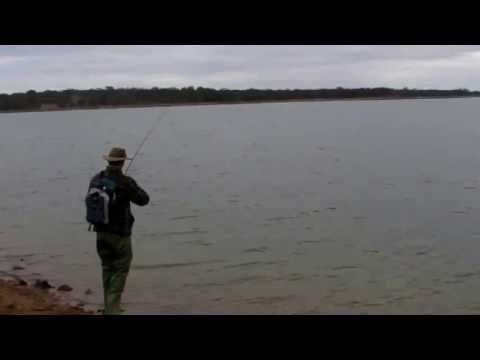 Brown Trout Fishing At Tullaroop Reservoir
