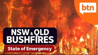 NSW & QLD Bushfires, Remembrance Day and the latest in sport - Today's Biggest News