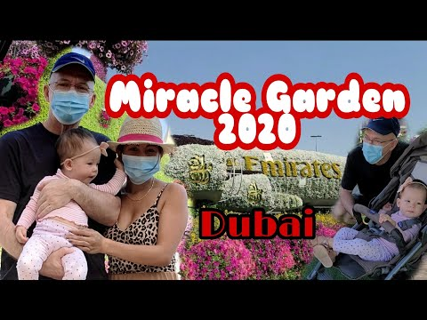 DUBAI MIRACLE GARDEN 2020 ! Dubai Life / Filipino Canadian Family Vlog