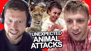 SIDEMEN REACT TO UNEXPECTED ANIMAL ATTACKS