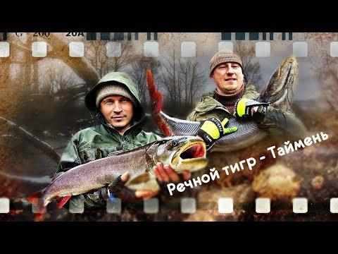Речной тигр - Таймень (сплав по таёжной реке 2018 год)