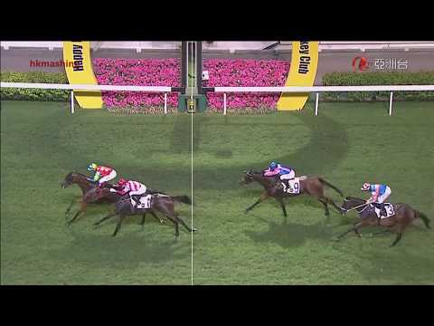 2015 The Victoria Racing Club Trophy - Ambitious Champion (雄心巨龍) - 韋達