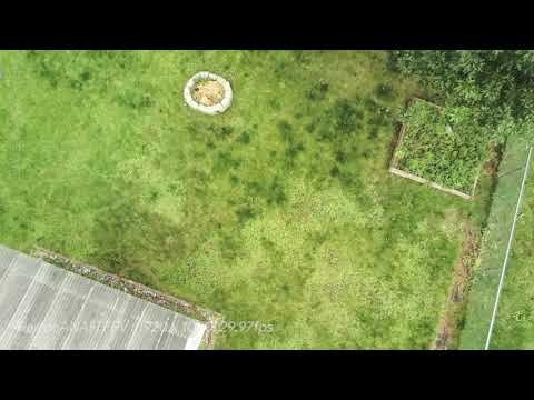 Parrot ANAFI FPV drone 1080p 30fps Test